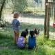 Tierisches Vergnügen mit Huhn und Hahn, Esel und Co.