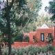 Im Baoussala haust Ihr mitten im Eukalyptuswald