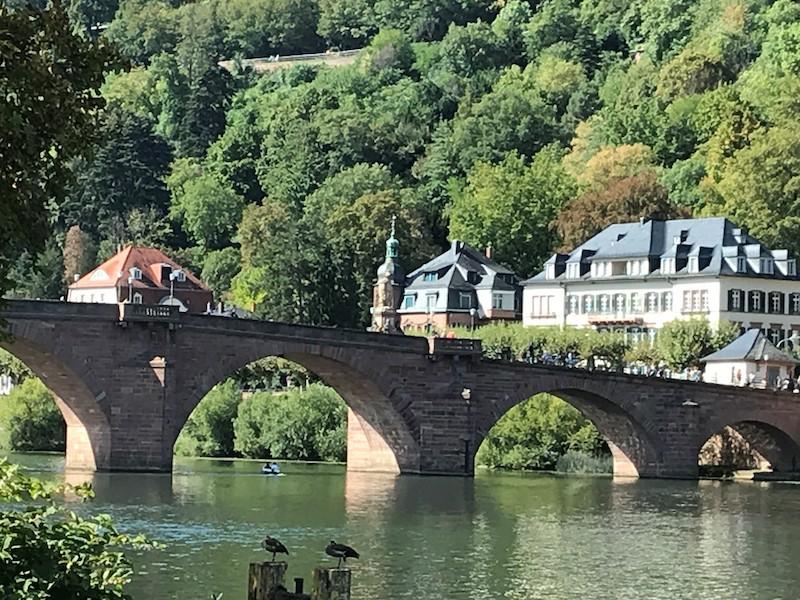 Die entzückende Stadt Heidelberg