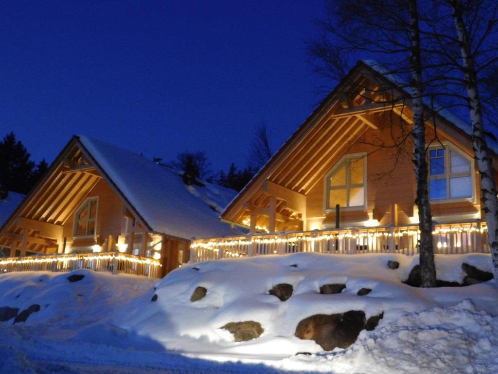 Winterzauber bei Nacht: So romantisch sehen die BergWald Lodges im Harz mit Schnee aus!