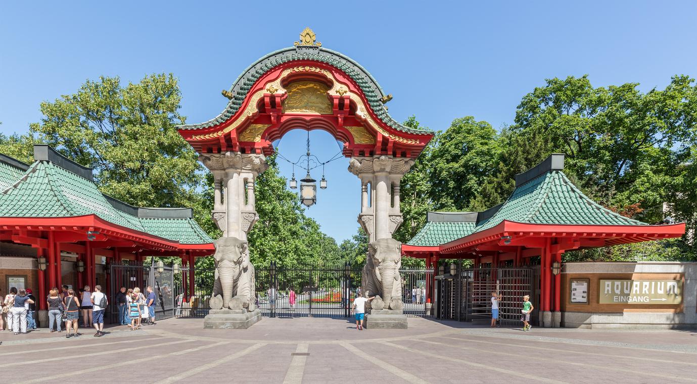 Tierisch schön, der Zoo in Berlin