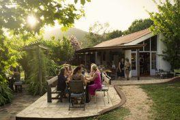 Eine Gruppe Gäste isst auf der Terrasse des Restaurants von Reguengo ... im Grünen