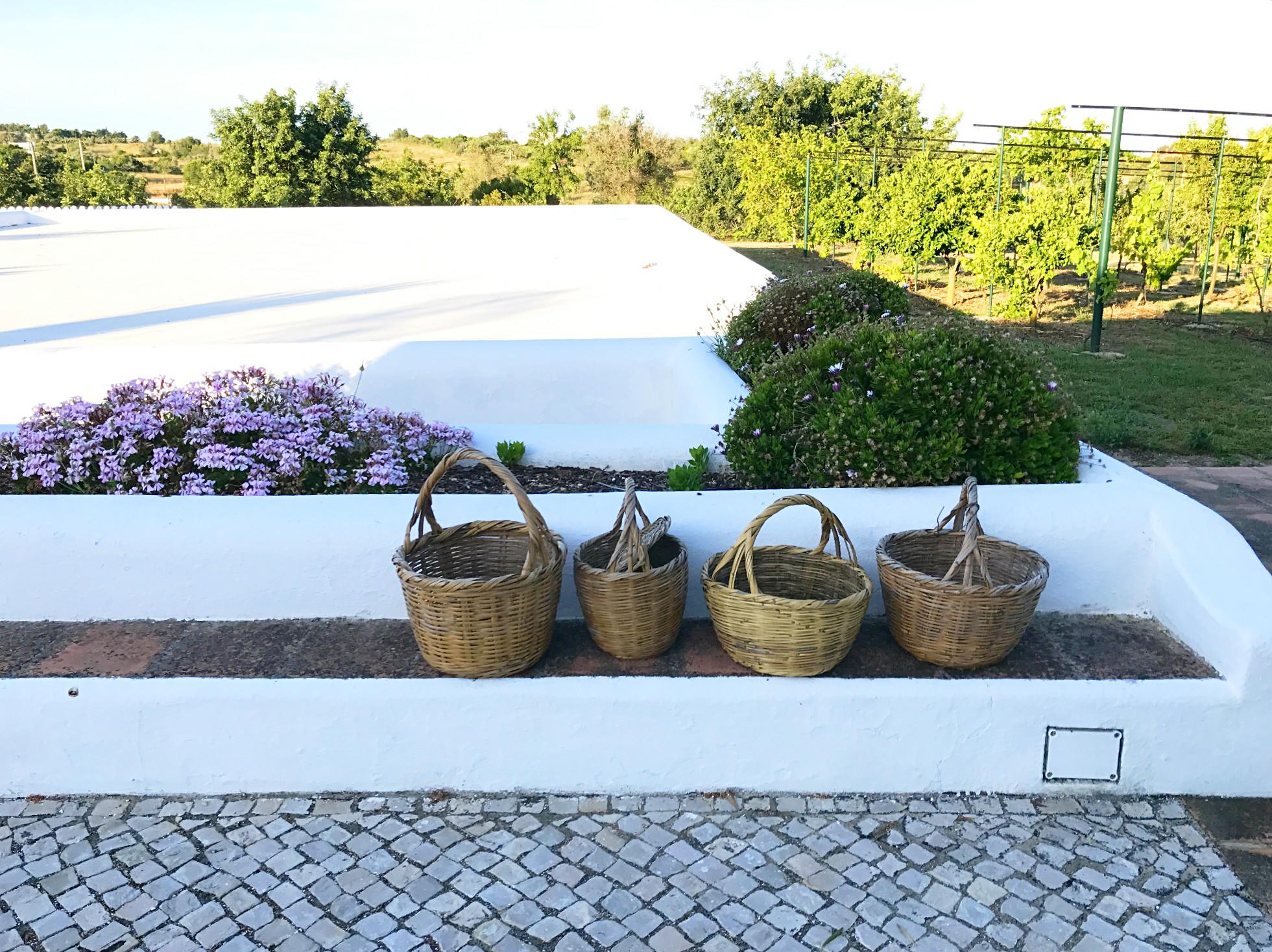 Das Eirado - das Regensammelbecken im Casa do Eirado mit den handgewebten Körben, in den José seine Feigen zum Markt trägt