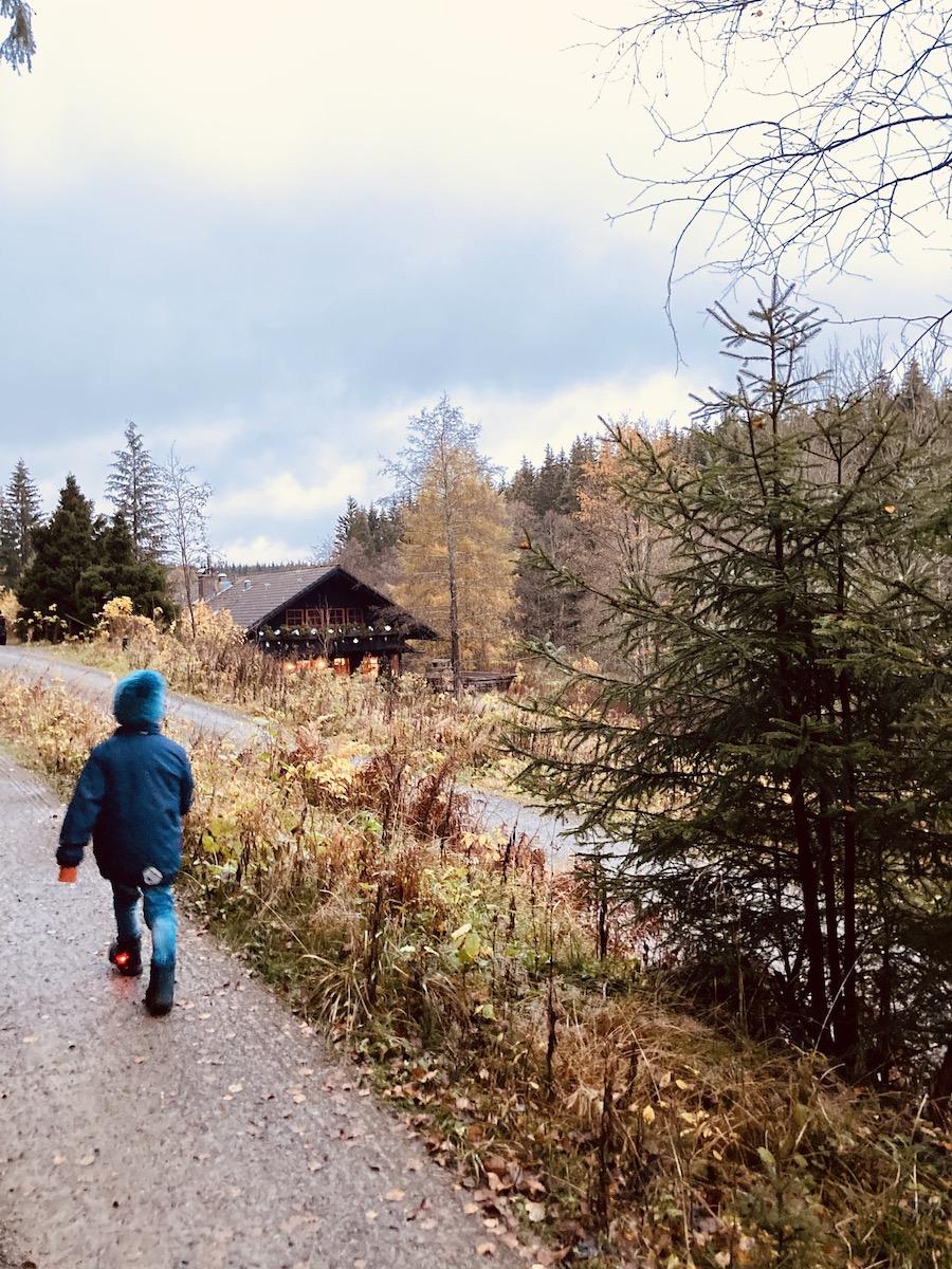 Wandern im Harz - meeega romantisch. Vor allem im Herbst!