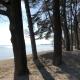 Das Ufer von Fischbach (erreicht Ihr nach 5 Minuten)