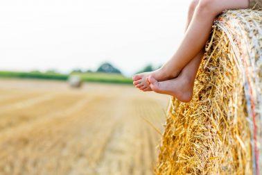 Familienurlaub auf dem Kinderbauernhof