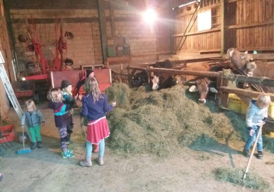 Urlaub auf dem Bauernhof mit Kindern: Kinder im Kuhstall auf dem Ferienhof Schöneberger