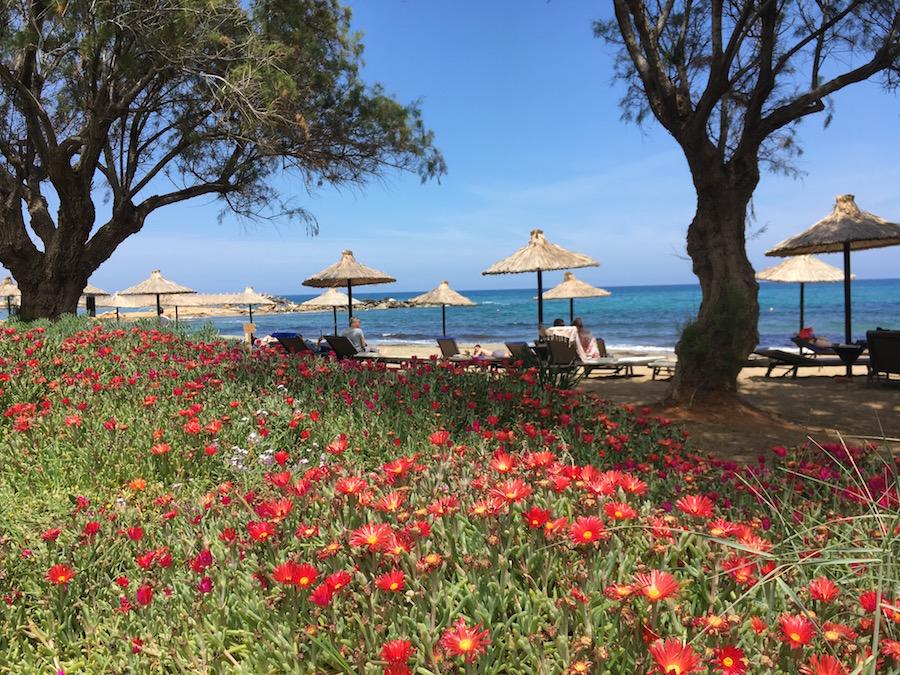 Beste Reisezeit Kreta mit Kindern: April bis Oktober