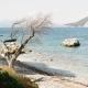 Auf Ithaka findet Ihr auch im Hochsommer einsame Buchten mit glasklarem Wasser