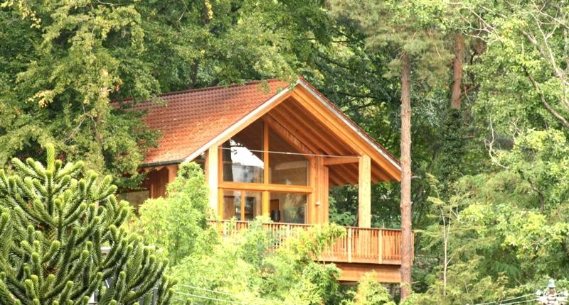 Familienurlaub Pfalz: Wie ein echtes Baumhaus kuschelt sich das Ferienhaus in die Bäume