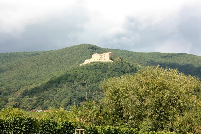 Pfalzurlaub mit Kindern: Das Hambacher Schloss!