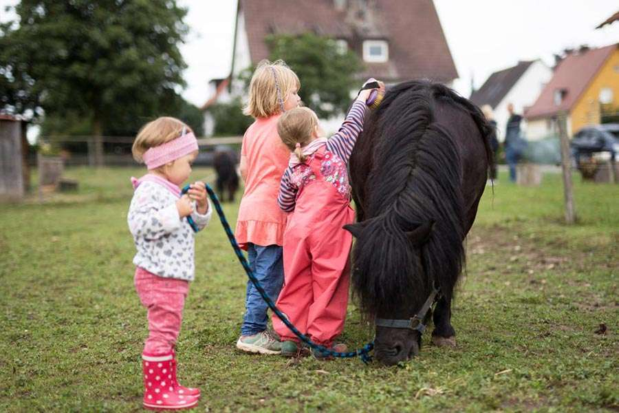 Urlaub mit Kindern auf dem Bauernhof im Allgäu: Pony striegeln auf dem Wellnessferienhof Lang im Unterallgäuf