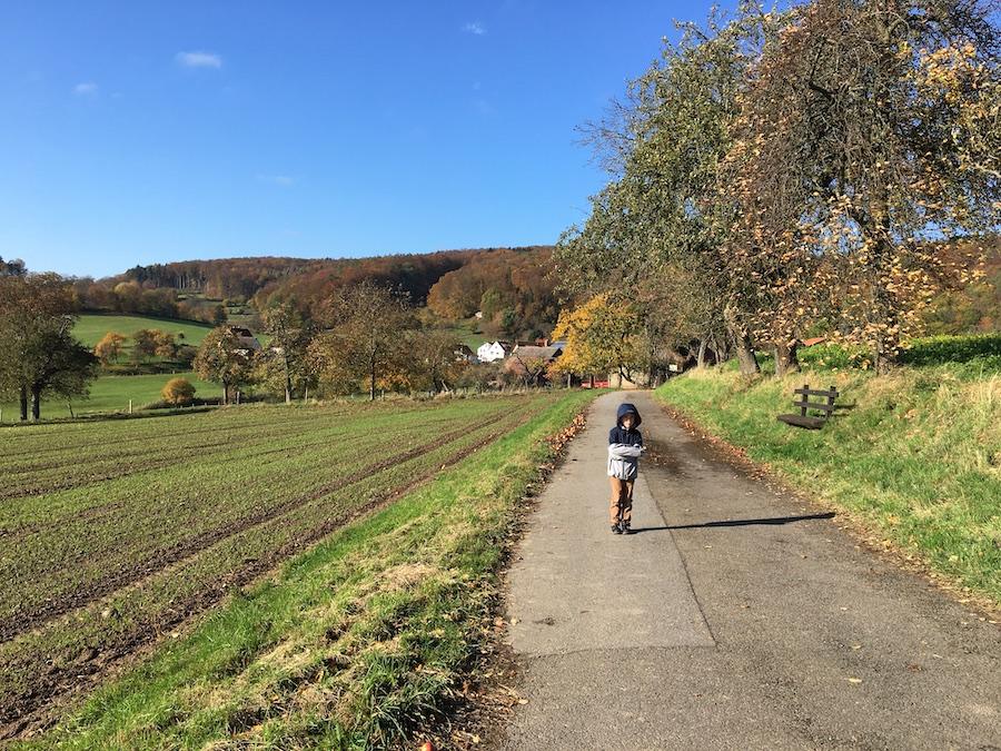 Der Odenwald hat wunderschöne Landschaften fürs Wandern!