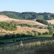 Die toskanische Hügellandschaft lädt zum Träumen ein
