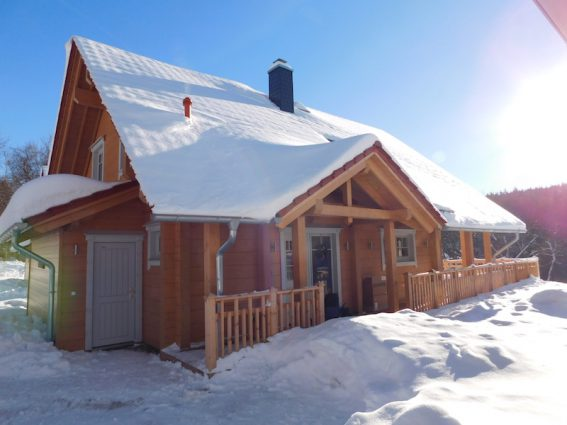 Bergwald Lodges im Schnee