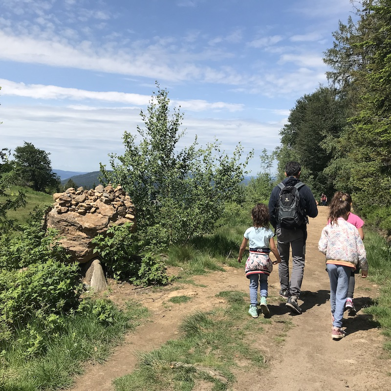 Bayerischer Wald mit Kindern: Auf dem Silberberg auf dem Weg zur Sommerrodelbahn