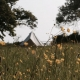 Noch mehr Natur gibt´s auf dem Zeltplatz der Farm