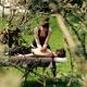 Gastgeberin Tia bietet richtig tolle Massagen an - sogar unter freiem Himmel!