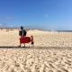 Vanessas Beach Boys an der Praia Melides
