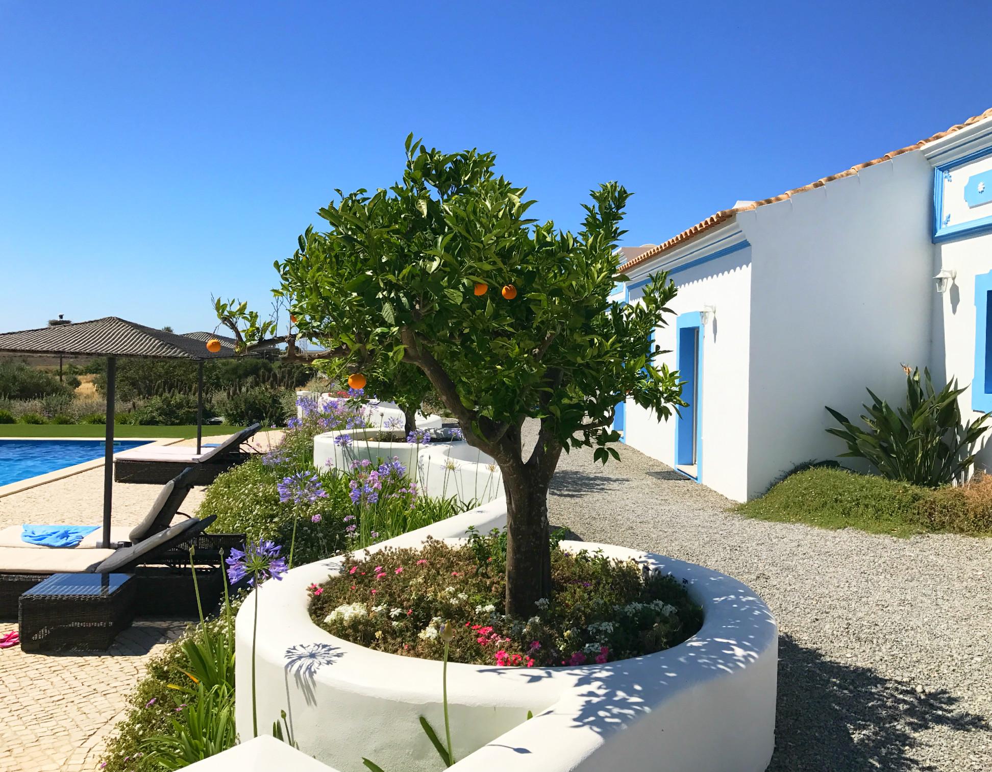 Casa Flor de Sal - die hübschen weiß-blauen Häuschen verteilen sich so übers Gelände, dass man sich nicht auf die Füße treten muss.