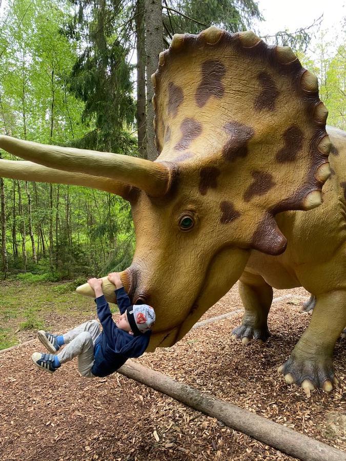 Altmühltal mit Kindern: Sauerierschaukel im Dinopark... hihi!