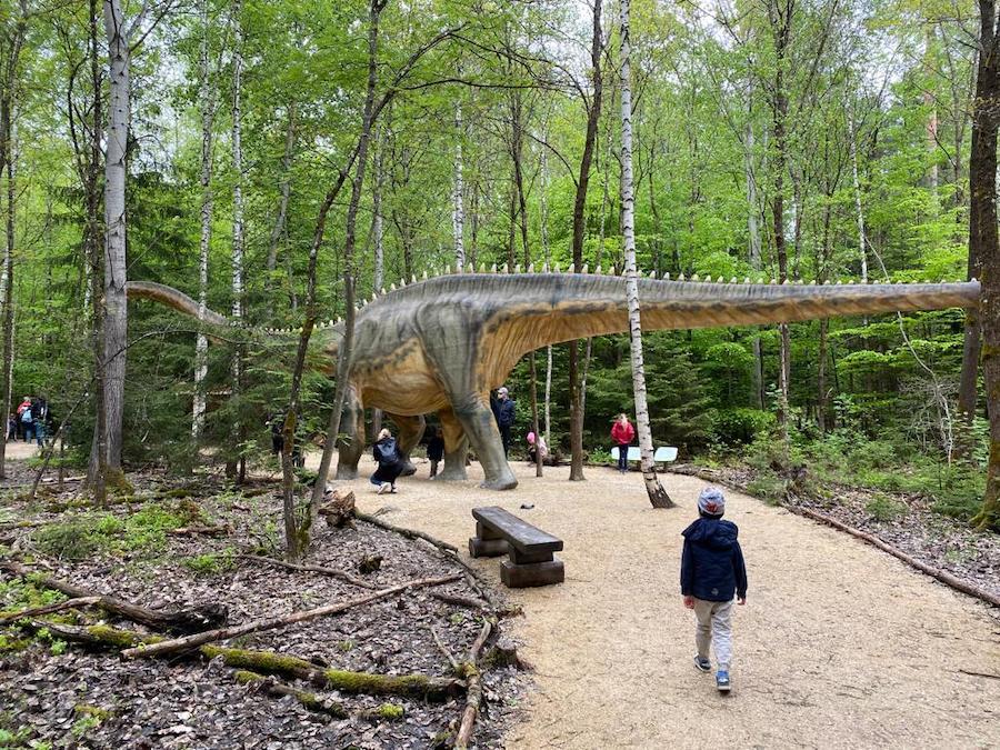 Meine Kollegin Susanne ist mit ihren Kindern im Dinsosaurierpark im Altmühltal unterwegs