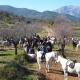 Reiten ist in Andalusien übrigens ein sehr beliebter Sport. Gut, dass der Nachbar von el Molino Pferde hat!