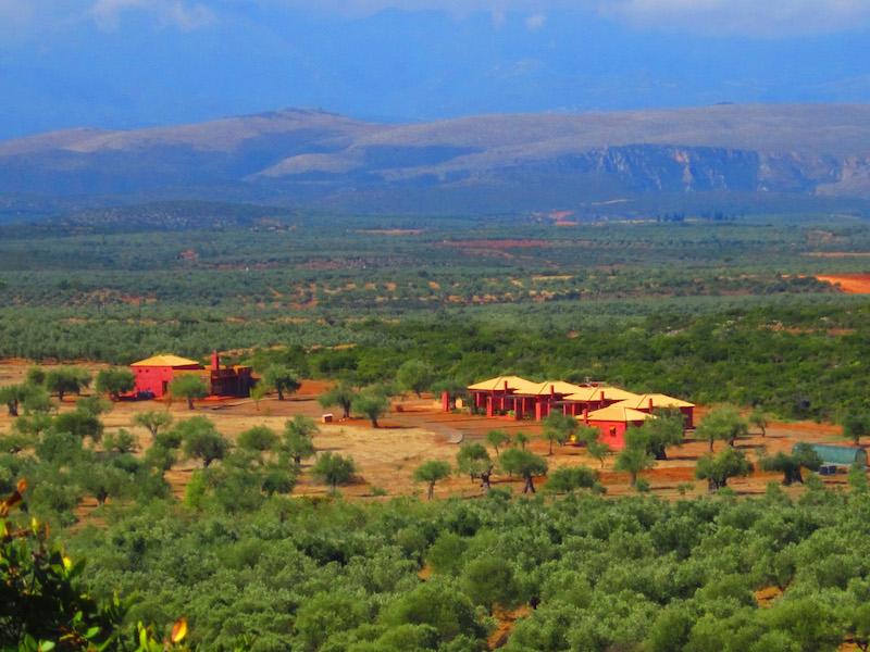 ... Und das Gebirge im Hintergrund. Von Eumelia habt Ihr Blick auf die zwei Gebirgszüge, die Lakonien einrahmen - das Parnon und Taygetos Gebirge