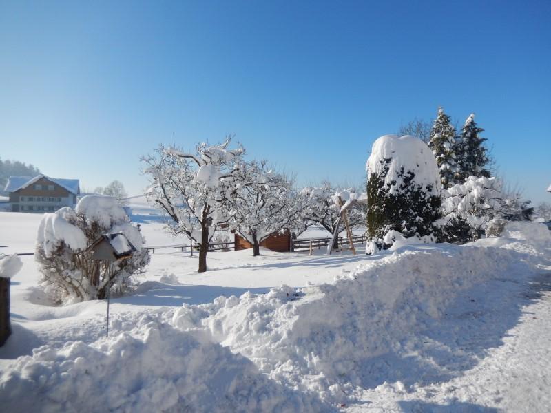 So viel Schnee kann hier schon mal runterkommen im Winter (Foto @Ferienhof Rummel)