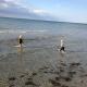 Am Natur-Strand gibt es neben schönem Sand auch ein paar größere Steine