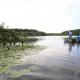 Riesige Seerosenfelder begegnen Euch immer wieder an der Seenplatte