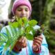 Im Wald herumtrödeln, Blätter sammeln und Tiere beobachten - Entschleunigung für Groß und Klein