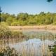 Ganz am Rande des Lustrup Farmhouses liegt ein idyllischer kleiner See