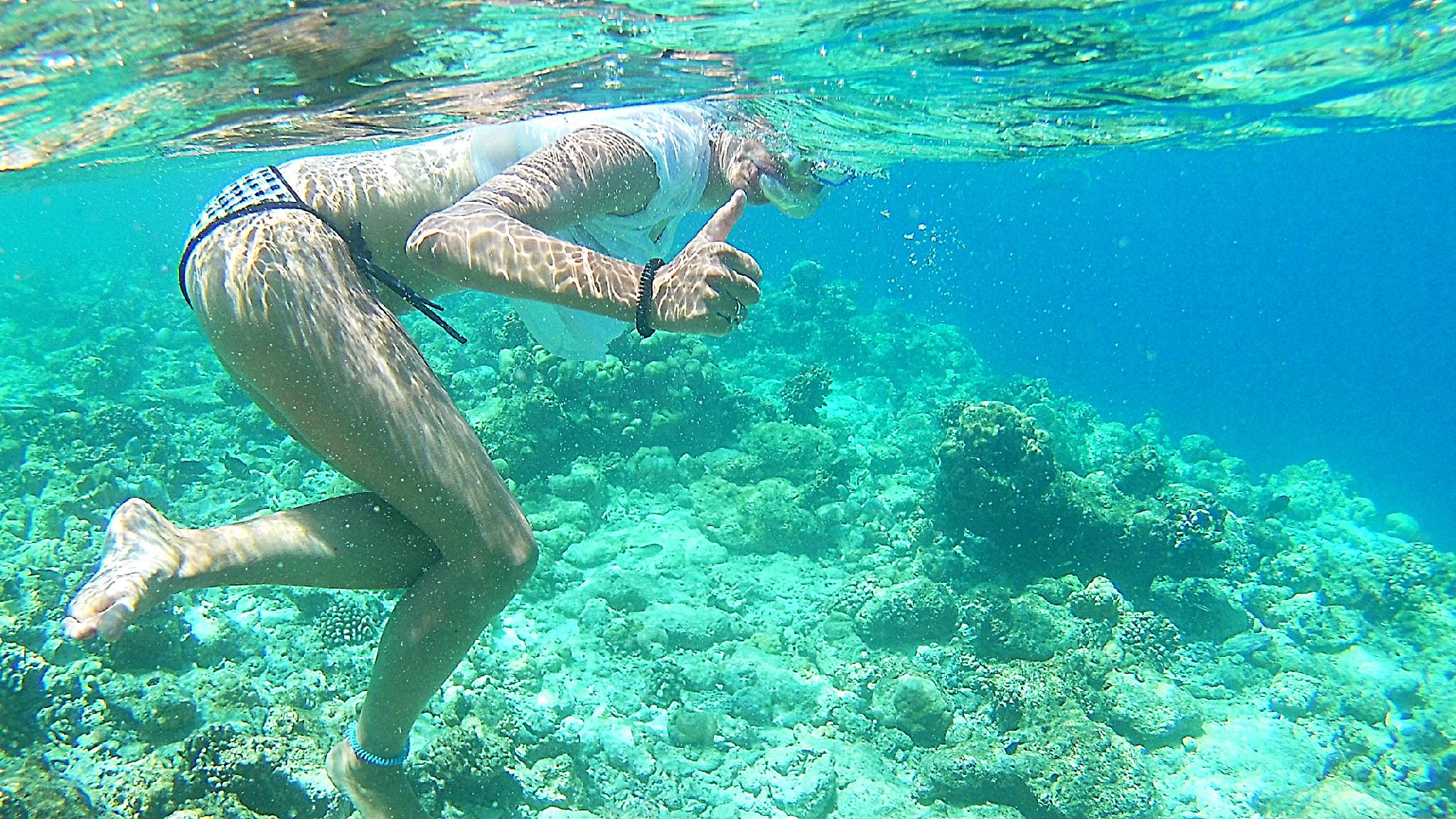 Schnorcheln im Hausriff vor Ukulhas - Ihr müsst nur wirklich aufpassen, nicht auf den Korallen rumzusteigen