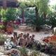 Die lustige Deko im Garten - da wachsen schon mal Pflanzen aus Schuhen...