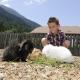... und auch die Kaninchen freuen sich über zweibeinige Spielkameraden