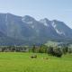 Die Umgebung ist typisch Bayerisch mit Bergen, Kühen und allem, was dazu gehört