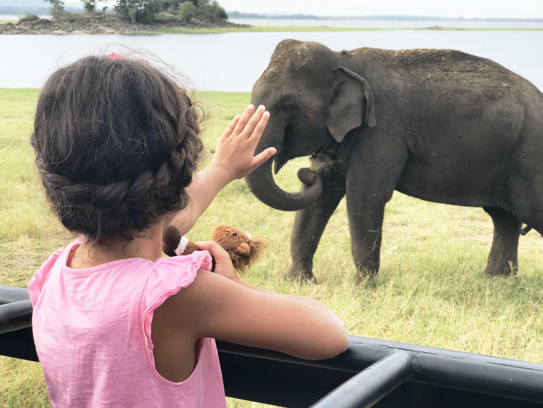 Ein Elefantenstreichelfoto musste sein!