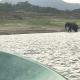 Einen Elefanten haben wir sogar beim Baden beobachtet