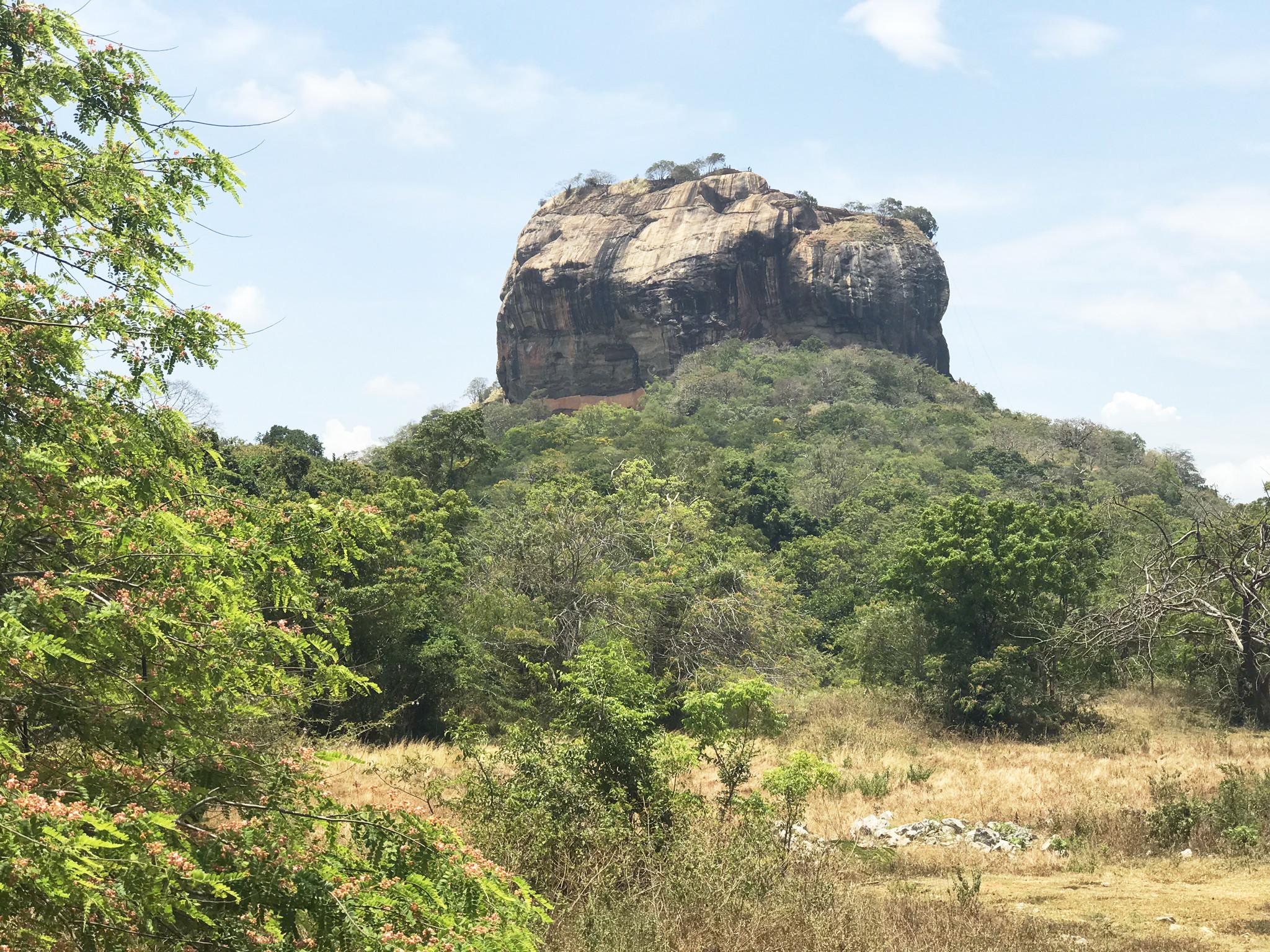 Den Singiriya Rock haben wir uns lieber von unten angesehen...