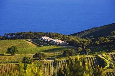 Die Unterkünfte des gigantischen Anwesens liegen zwischen Meer und Weinreben mit ganz viel Grün drumrum