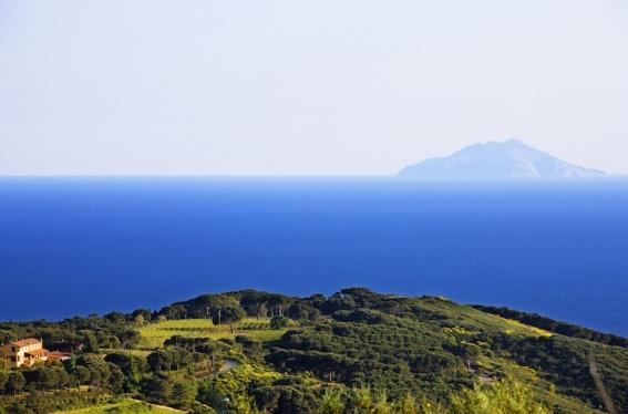 Die Tenuta delle Ripalte liegt malerisch in der Natur mit Blick auf die anderen Inseln des Toskanischen Archipels