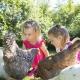 Fünfmal die Woche dürfen die Kinder beim Tiere füttern helfen...