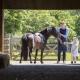 Zweimal die Woche dürfen die Kinder kostenlos auf den Ponys reiten
